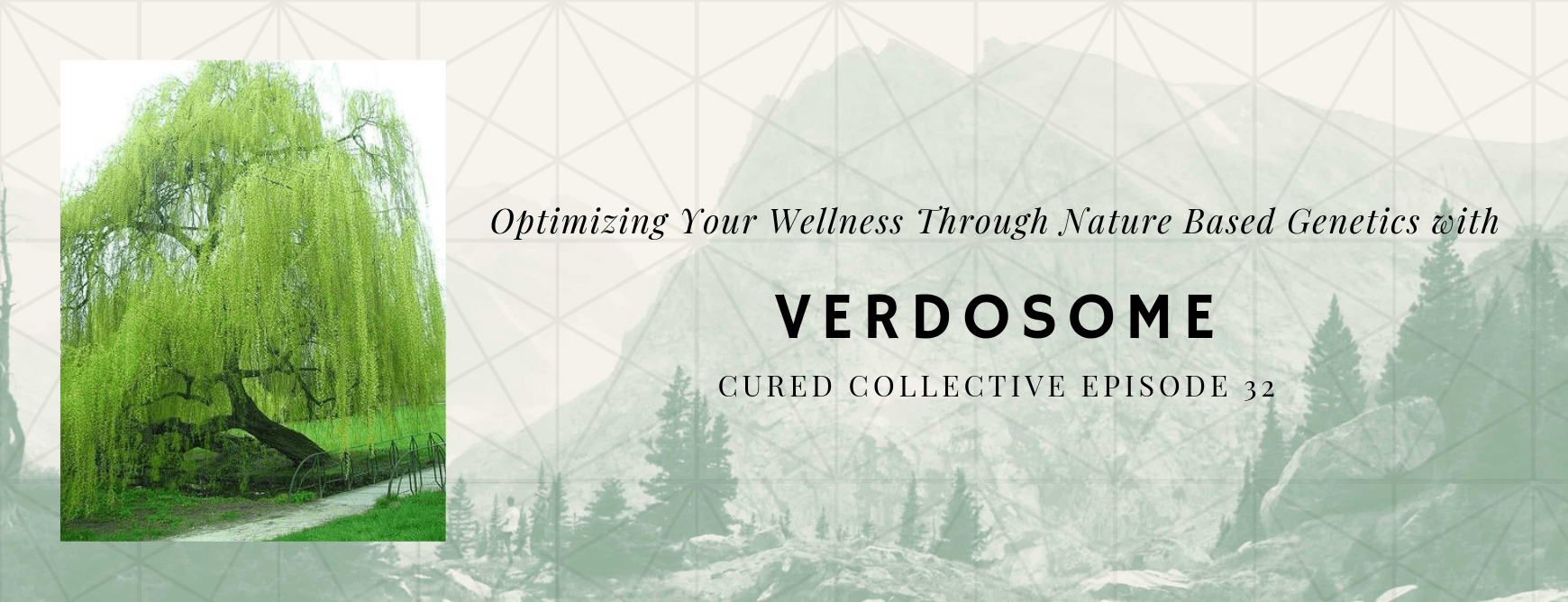 Verdosome on the Cured Collective